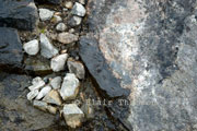 Image from Rocks Underfoot Series